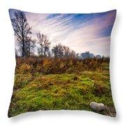 Autumn Morning Throw Pillow by Davorin Mance
