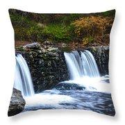 Autumn Morning On The Wissahickon Throw Pillow