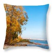 Autumn On The Dnieper River Throw Pillow