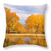 Autumn Orange Throw Pillow