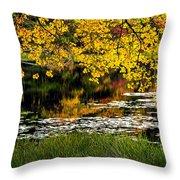 Autumn Pond 2013 Throw Pillow