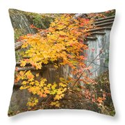 Autumn Steps Near Smalls Falls In Maine Throw Pillow