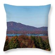 Autumn Trees At Lakeshore, Brome Lake Throw Pillow