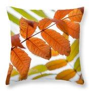 Autumn Upshot Throw Pillow