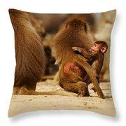 Baboon Family In The Desert Throw Pillow