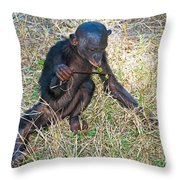 Baby Bonobo Throw Pillow