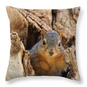 Baby Fox Squirrel Throw Pillow