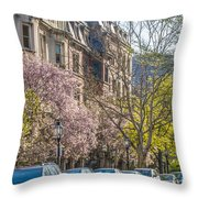 Back Bay Brownstones Throw Pillow