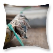 Bait On Hooks  Throw Pillow