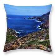 Baja Coast Throw Pillow