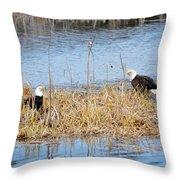 Bald Eagle Pair Throw Pillow