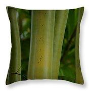 Bamboo II Throw Pillow