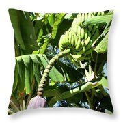Banana Tree Throw Pillow