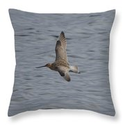 Bar-tailed Godwit Throw Pillow