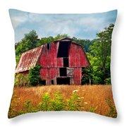 Barn 23 Throw Pillow