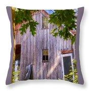 Barn Story Throw Pillow