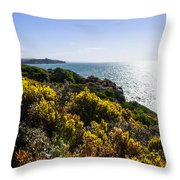 Bass Strait Ocean Landscape In Tasmania Throw Pillow