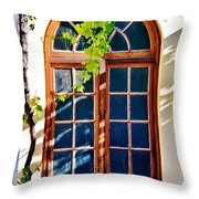 Bay Window Throw Pillow
