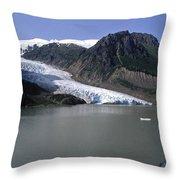 Bear Glacier Throw Pillow