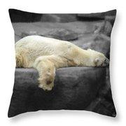Bear On A Break Throw Pillow