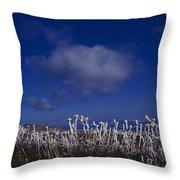 Beartooth Mountain Frost Throw Pillow