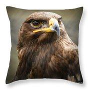 Beautiful Golden Eagle Portrait Throw Pillow