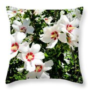 Beautiful Hibiscus Throw Pillow