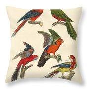 Beautiful Parrots Throw Pillow
