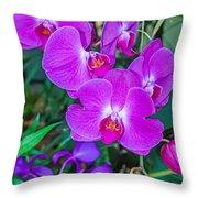 Beautiful Purple Orchid - Phalaenopsis Throw Pillow