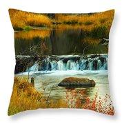 Beautiful Water Throw Pillow