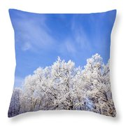 Beautiful Winter Landscape Throw Pillow