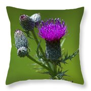 Beauty Before Glory... Throw Pillow