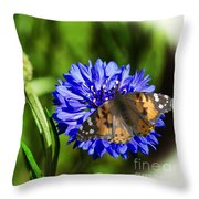 Beauty In The Eyes Of The Beholder Throw Pillow