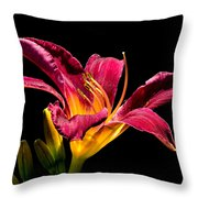 Beauty On The Black #5 Throw Pillow