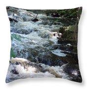 Beaver Brook Throw Pillow