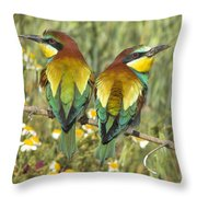 Bee-eaters Throw Pillow