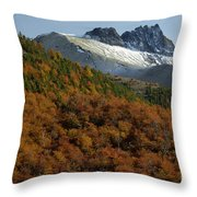 Beech Forest, Chile Throw Pillow