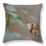 Beige On Beige Butterfly Throw Pillow