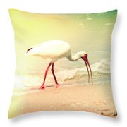 Bird Breakfast Throw Pillow