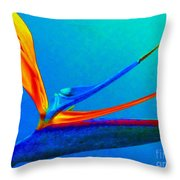 Bird Of Paradise With Blue Background Throw Pillow