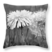 Birth Life Death Throw Pillow by Frozen in Time Fine Art Photography