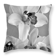 Black And White Beauty Throw Pillow