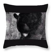 Black Bear Curtsy  Throw Pillow