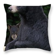 Black Bear With Cub Throw Pillow