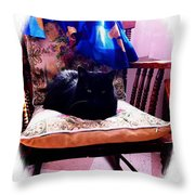 Black Cat With One White Whisker Throw Pillow