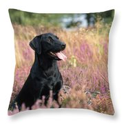 Black Labrador Dog Throw Pillow
