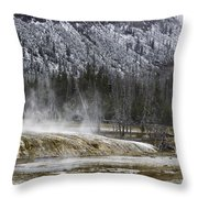 Black Sand Basin Throw Pillow