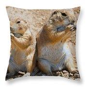Black Tail Prairie Dogs Throw Pillow