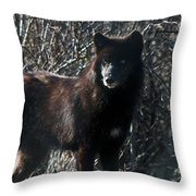 Black Wolf Throw Pillow