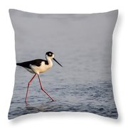 Blacknecked Stilt Throw Pillow